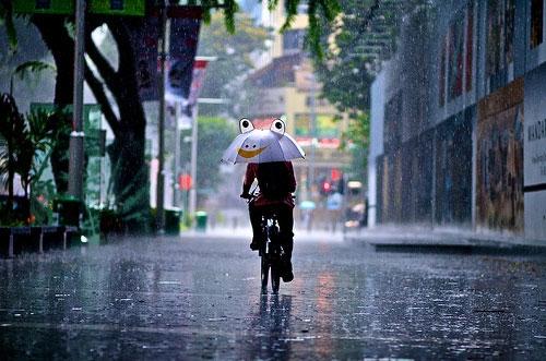 Bài văn viết những cảm nghĩ về mưa Sài Gòn