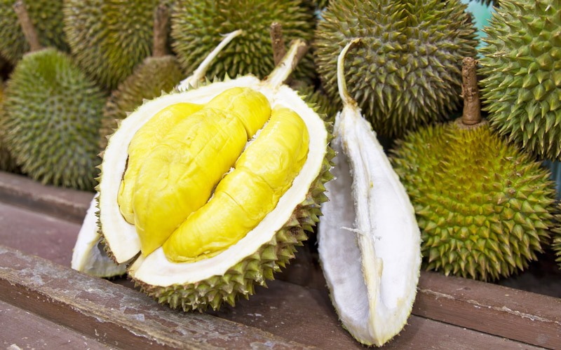 Quả sầu riêng - Trái sầu riêng